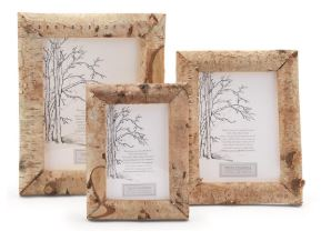 White Birch Frame