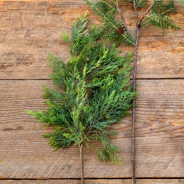 county line cedar stem